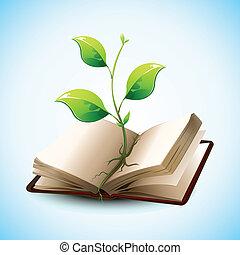 wachsen, pflanze, buch, rgeöffnete