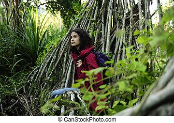 wanderer, rainforest, ecotourism:, weibliche , erforschen, wildnis