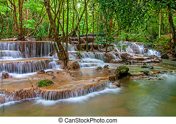 Wasserfall im Regenwald.