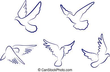 Weiße Tauben