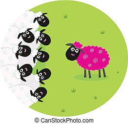 Weiße und rosa Schafe