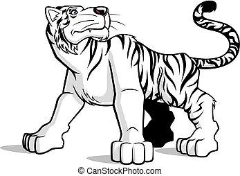 Weißer Tiger.