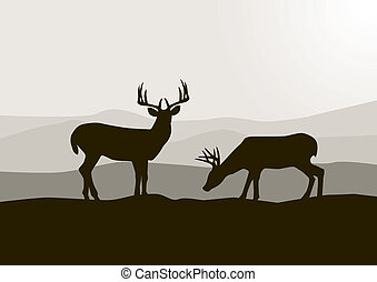 Wilde Silhouette in der Wildnis