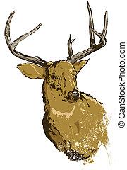 Wilder Hirschvektor Illustration