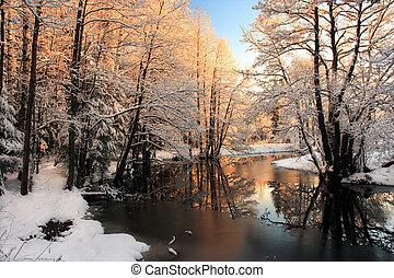 Winterfluss Sonnenaufgangslicht