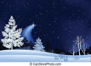 Winterland-Illustration