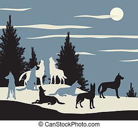 Wolfspack.
