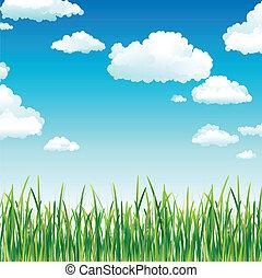 Wolken über dem grünen Gras