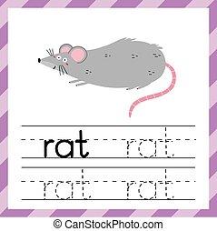 wort, arbeitsblatt, rat., lernen, material, kinder, verfolgen