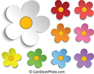 Wunderschöne Frühlingsblumensammlung mit neun