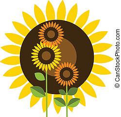 Wunderschöne gelbe Sonnenblume