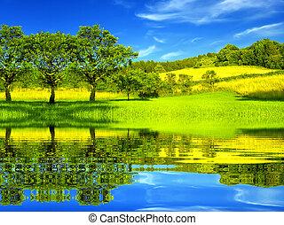 Wunderschöne grüne Umgebung