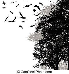 Wunderschöne Wälder mit fliegenden Vögeln.