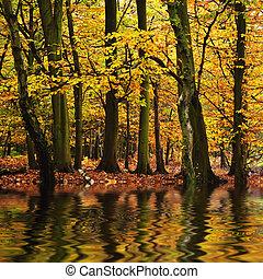 Wunderschöne Waldlandschaft mit lebhaften Herbstsaison Farben reflektiert i n Wasser.