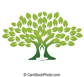 Yoga und Baum