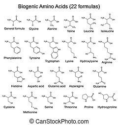 zwanzig, säuren, biogenic, zwei, amino