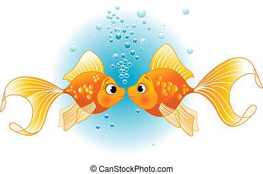 Zwei verliebte Fische.